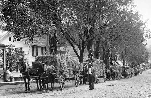 Hay wagons with harvest, c.1900